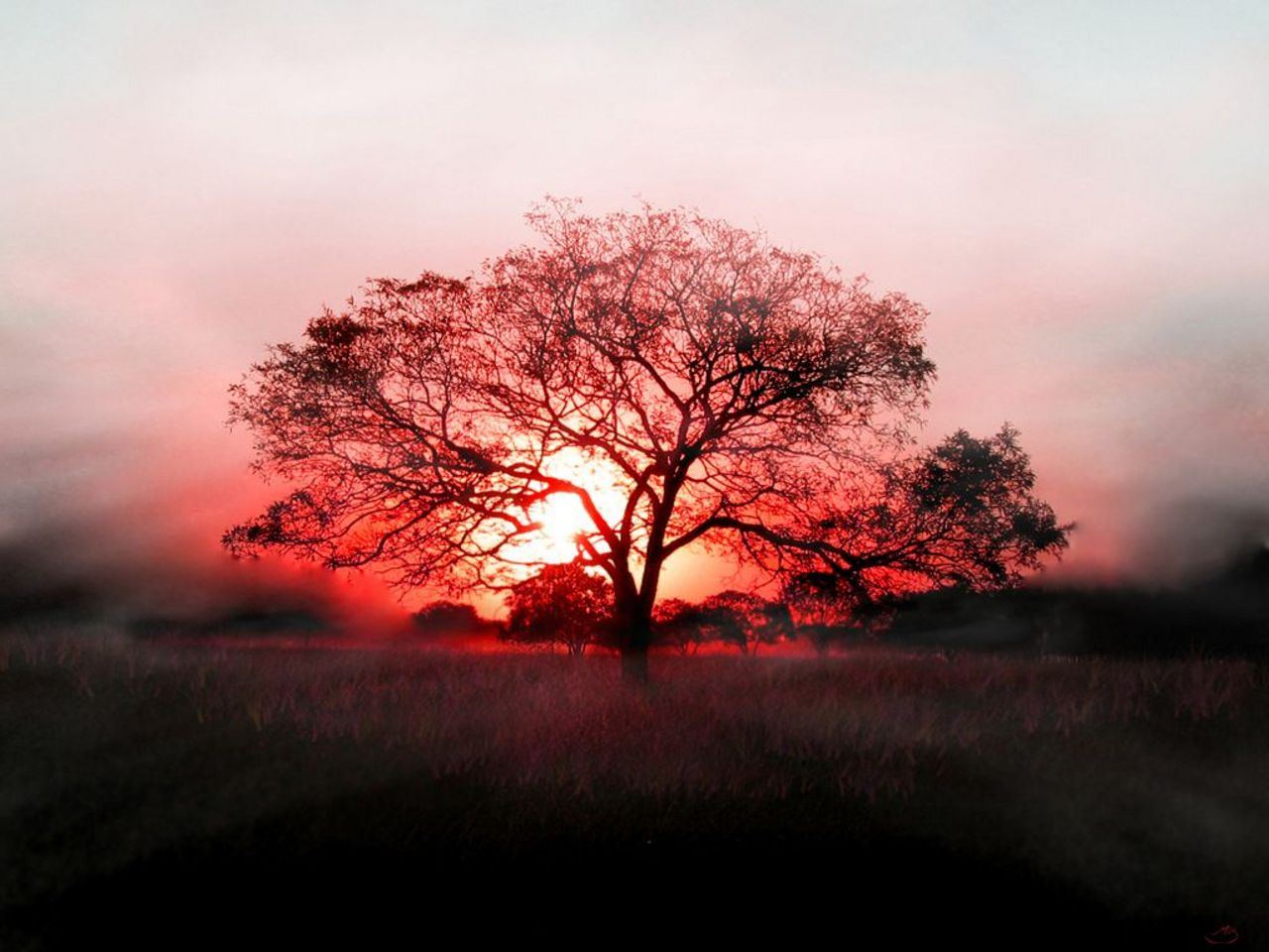 L'horloger de notre dame_page:4_ coucher-soleil-fond-ecran-hd